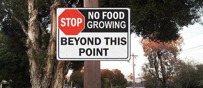 Photo of Cities – Food Free Zones? The Creation of the Urban Food Desert