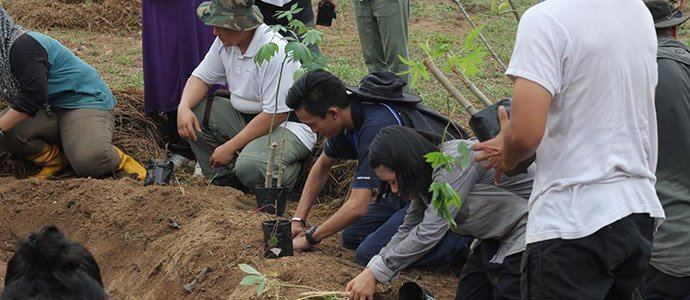 Photo of Permaculture at Taman Pertanian