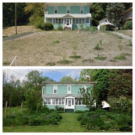 Urban Permaculture Transformation in Michigan 07