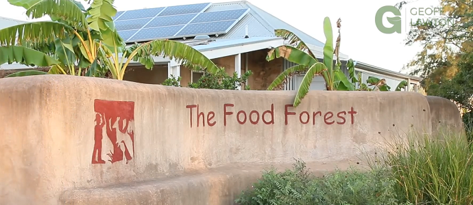 Photo of The Food Forest: A Shining Example Of Permaculture in Australia