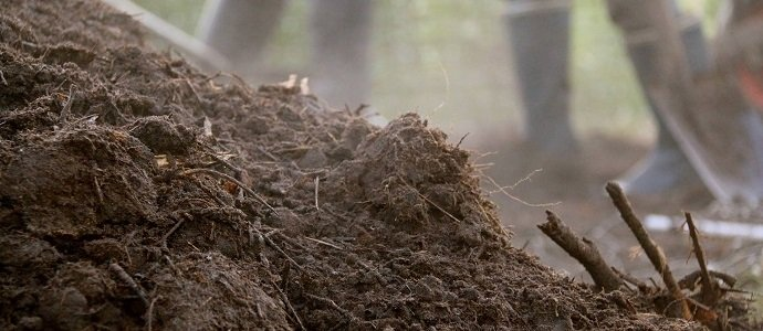 Photo of Confusing your Compost with your Mulch?