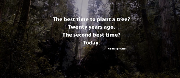 Photo of One Man's Mission to Revive the Last Redwood Forests | Short Film Showcase