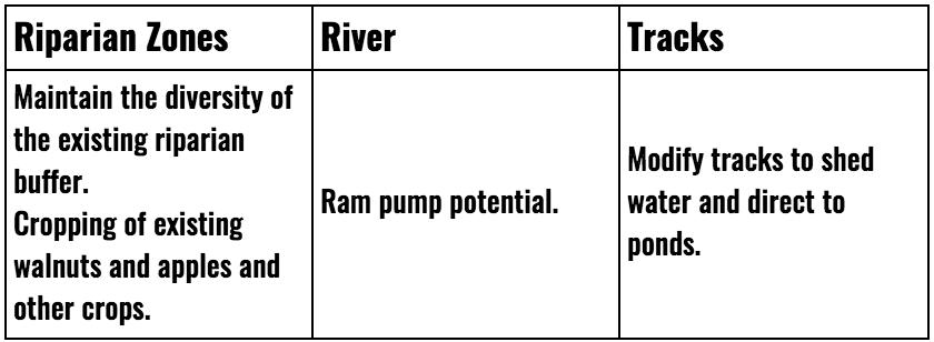 Riparian-Zones