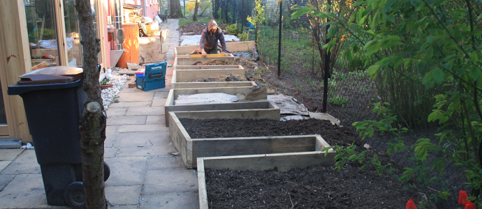 Photo of Urban Permaculture Transformation