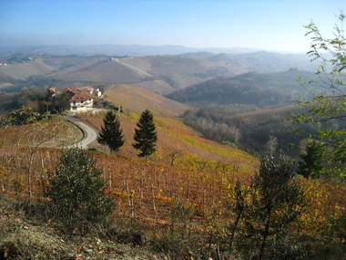 A classic landscape near the town of Alba