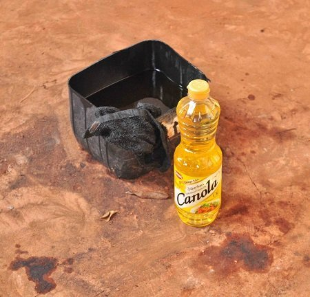 Canola Oil - photo by David Ashwanden