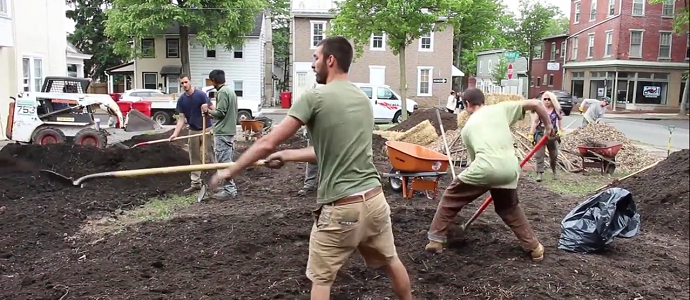 Photo of Installing an Urban Food Forest – Updated