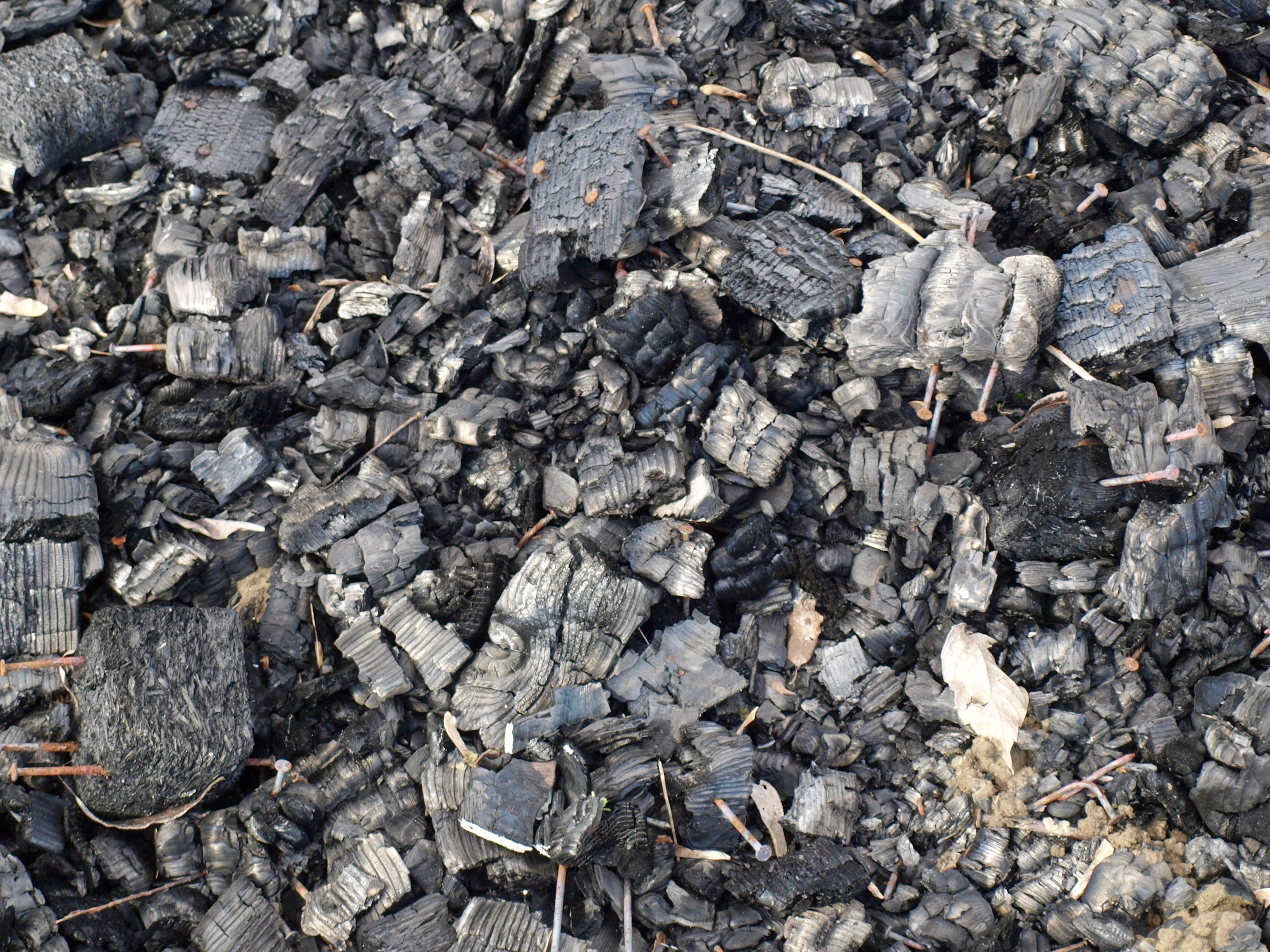 Photo of Biochar, A Brief History
