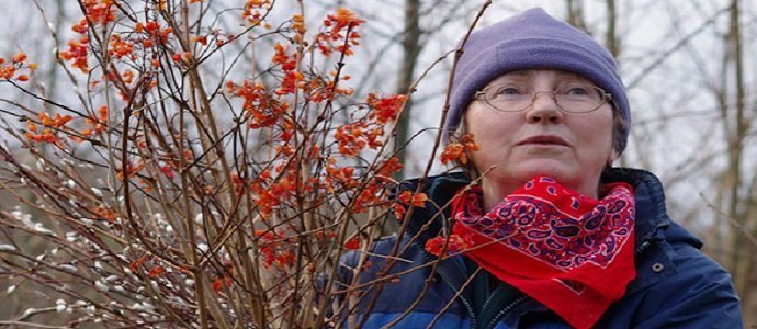 Photo of Anne Stobart – Medicinal Forest Gardens – A New Quality In Permaculture