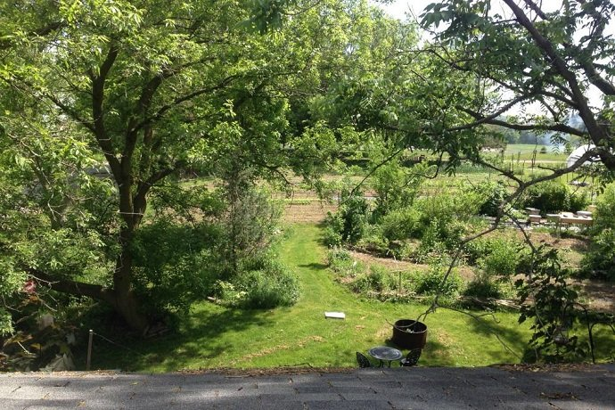 Looking south from the bedroom window 06/16