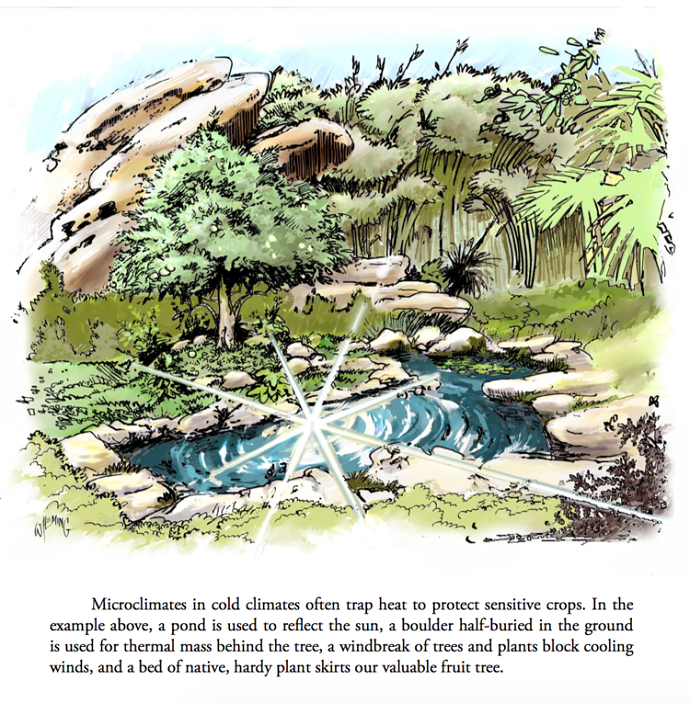 Permaculture Student 1 (eBook) 02