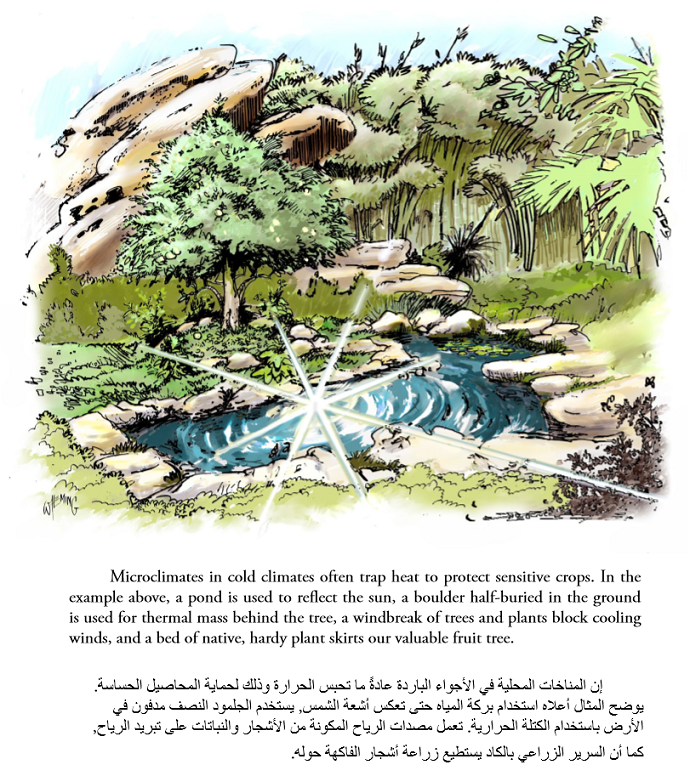 The Permaculture Student 1 eBook English-Arabic 01