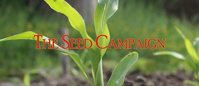 Photo of The Seed Campaign