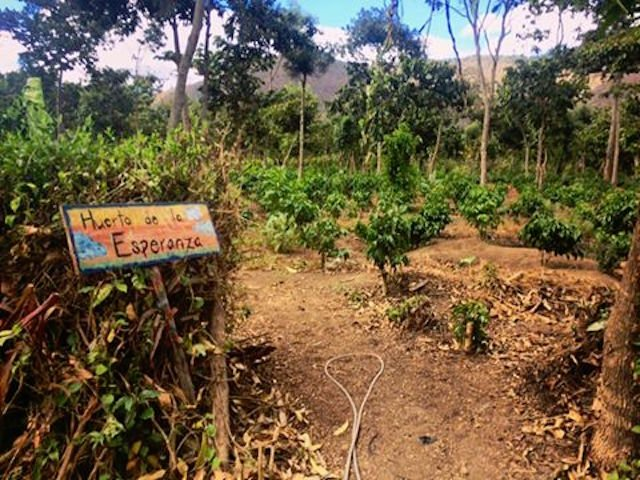 Garden of Hope Entrance (Claire Henkel)