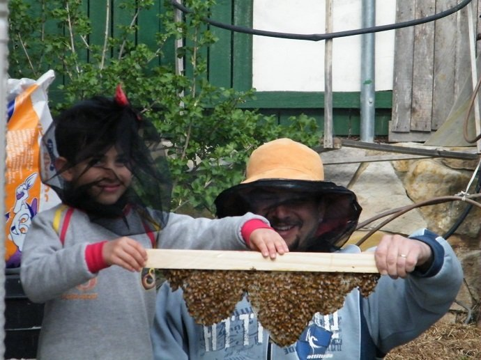 Integrating Beekeeping with Permaculture 06