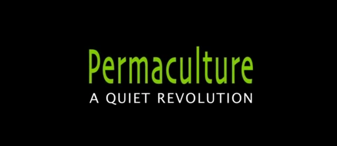 Photo of Permaculture: A Quiet Revolution