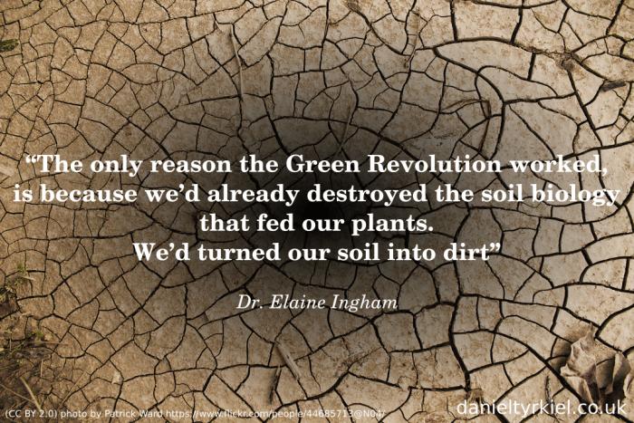 Soil Foodweb 04