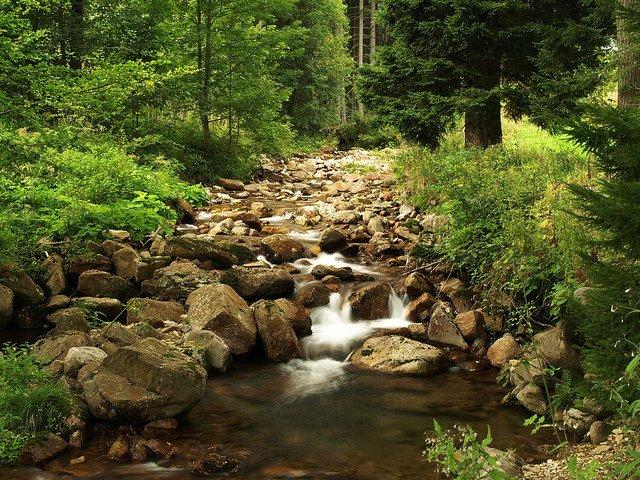 A Mountain Stream (Vlastimil Koutecky)