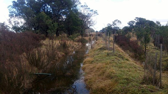 The swales can be filled from the dam to provide irrigation when needed.