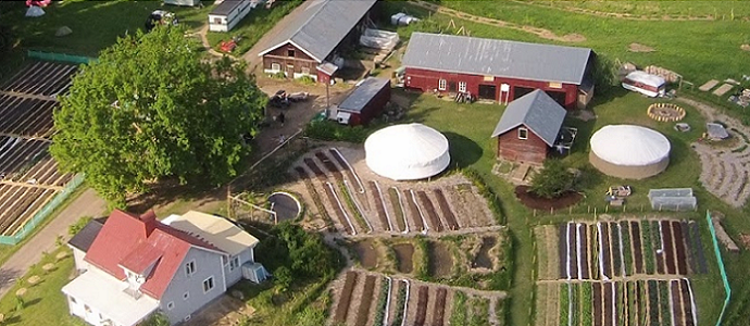 Photo of Why Are There So Few Profitable Permaculture Farms?