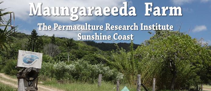 Photo of Maungaraeeda Farm