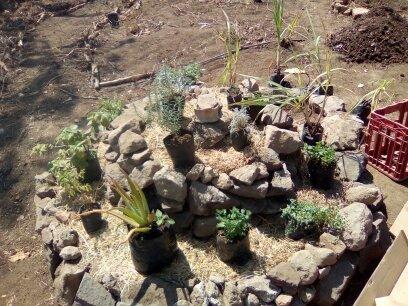 Planting the Herb Spiral. Image Courtesy Jonathon Engels.