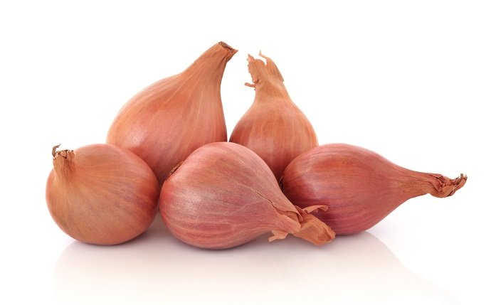 Shallots: The Fancy Vegetable 01