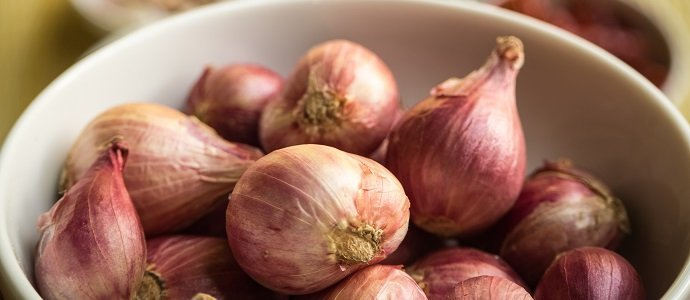 Photo of Shallots: The Fancy Vegetable