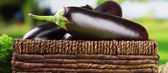 Photo of The Incredible Edible Eggplant