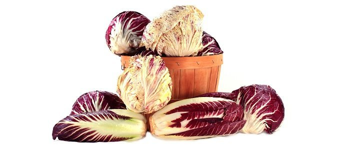 Photo of Red Radicchio