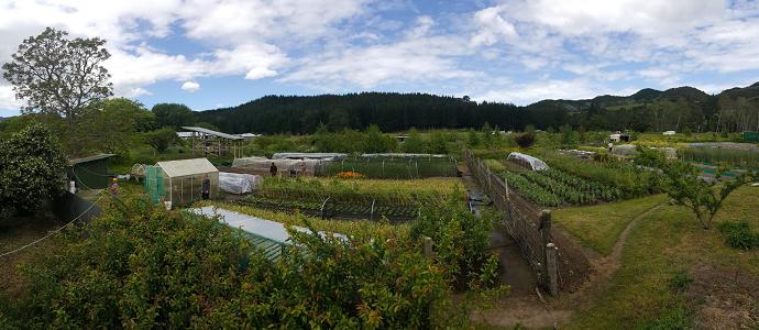 Photo of The Koanga Institute: Farming for the Future