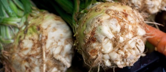 Photo of Lets Celebrate Celeriac