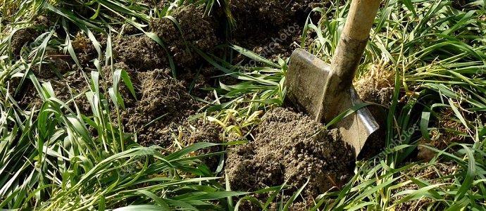 Photo of Making Modern-Day Night Soil