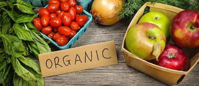 Photo of Organic Farming – A Boon for Environmental Sustainability