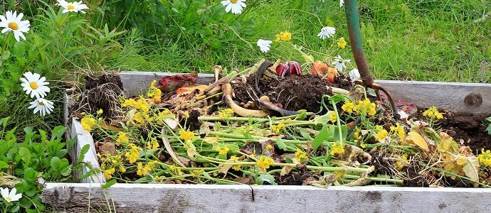 Photo of Composting – A Solution to the Burning Problem of Solid Waste Management