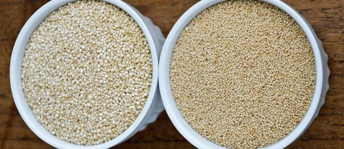 Photo of A Primer on Growing Quinoa and Amaranth