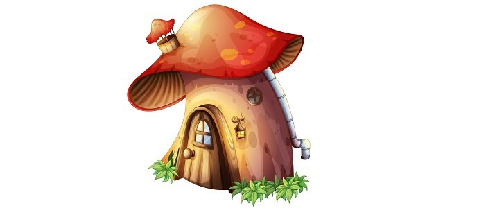 Photo of A Mushroom Home: The Future of Zero Waste