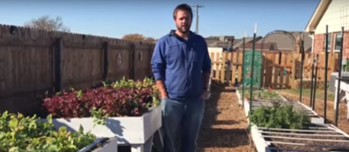 Photo of Urban Garden Tour – How We Grow Food For Our Family of 6 in Our Backyard
