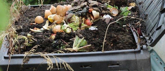 Photo of Keeping Organic Waste Out of Landfills