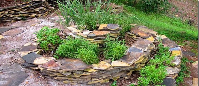 Photo of The Herb Spiral: A Simple Way to Grow Kitchen Herbs