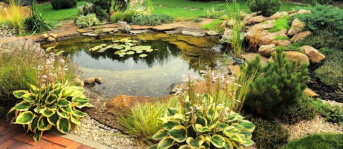 Photo of Storing Water in the Landscape: A Swales and Ponds Primer