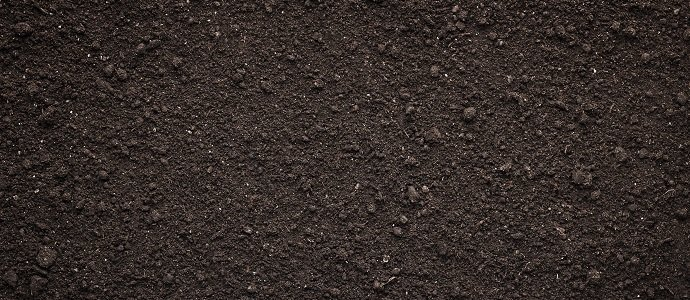 Photo of Top Soil: A Catalyst for Better Health and Nutrition