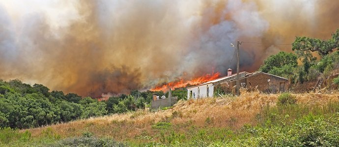 Photo of How to Protect our Farms from Wildfires