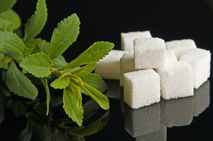 Stevia rebaudiana the herbal support for sugar