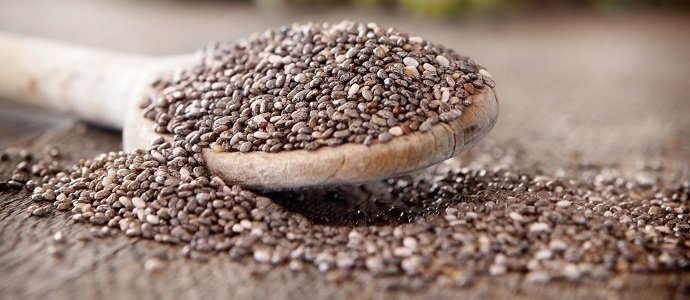 Photo of The Health Benefits of the Chia Seed