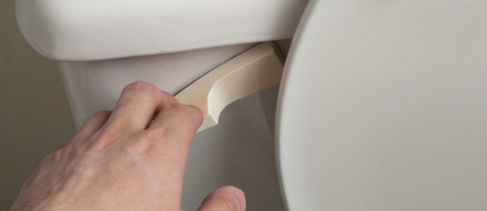 Photo of The Watson Wick Flush Toilet System