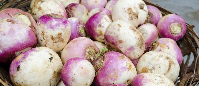 Photo of Tasty Turnips