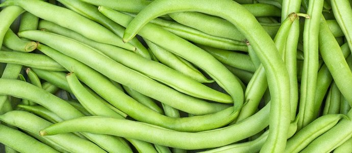 Photo of Go Green Beans!