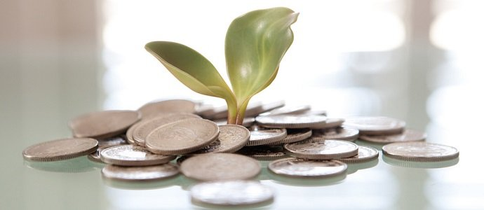 Photo of Money & Permaculture