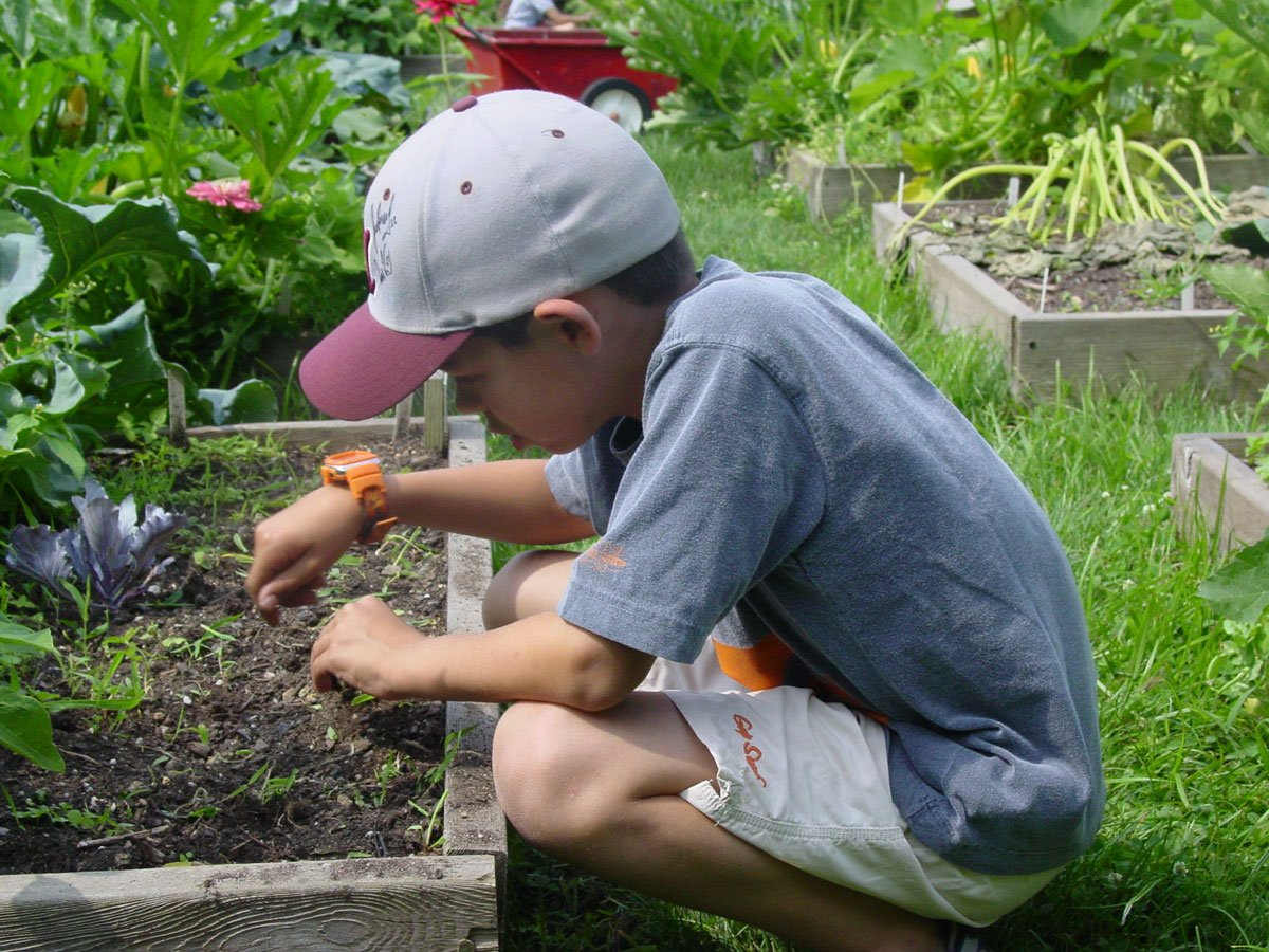 Photo of How To Motivate Kids To Learn About Permaculture